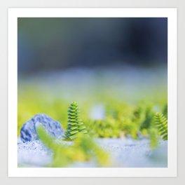 Nature & Simplicity Art Print