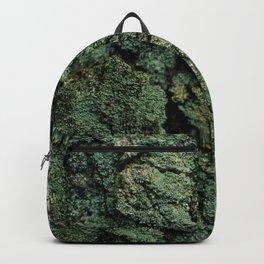 Mossy Birch Bark Backpack