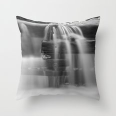 The Dam Throw Pillow