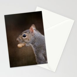 The Nut Collector Stationery Cards