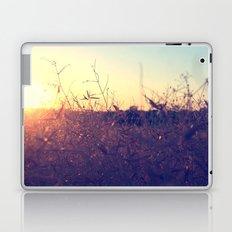 Evening in Summer Laptop & iPad Skin