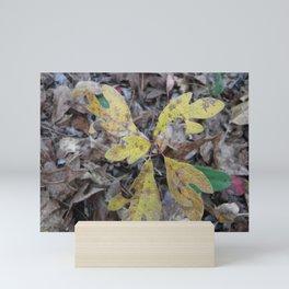 Sassafras Leaves Mini Art Print