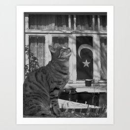Turkish Flag and Cat Black and White Art Print