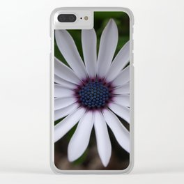 PERFECT CAPE DAISY FLOWER Clear iPhone Case