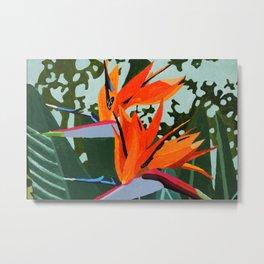 Strelitzia - Bird of Paradise Metal Print