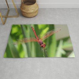 Red Skimmer or Firecracker Dragonfly Closeup Rug