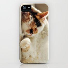 Sunday Feline iPhone Case