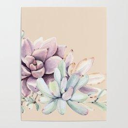 Trendy Apricot + Mint Succulents Poster