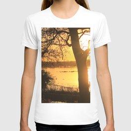 Floodplain at Sunset 2 T-shirt