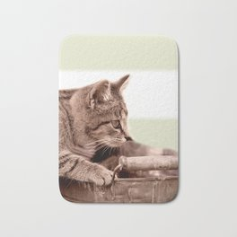 Cat Play Bath Mat