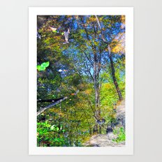 Nature Reflecting Nature II Art Print