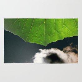Stormy Sky under a leaf Rug