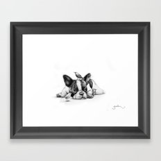 Frenchie and the Birds Framed Art Print