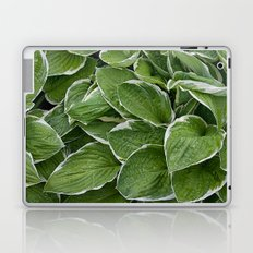 Hosta Leaves in the Rain Laptop & iPad Skin