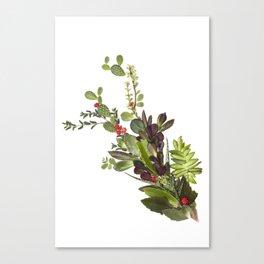 Abstract Succulent Bouquet Canvas Print