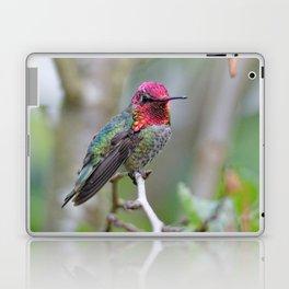 Anna's Hummingbird on the Plum Tree Laptop & iPad Skin