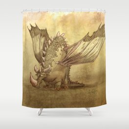 Del, the lonely desert dragon Shower Curtain