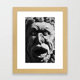 Stone Faced Framed Art Print