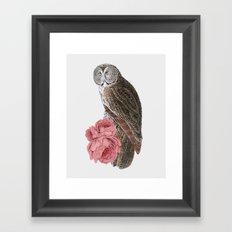 The owl of love Framed Art Print