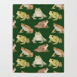 Toads Poster