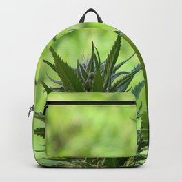 Beauty is in the eye of the beholder... Backpack