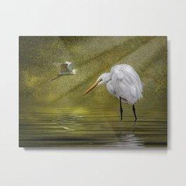 Everglades Evening Metal Print