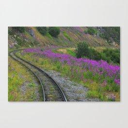 The White Pass Railroad, Skagway, Alaska, 2011 Canvas Print