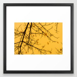 November Leaves Framed Art Print