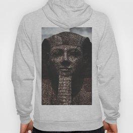 Pharaon Marbre Hoody
