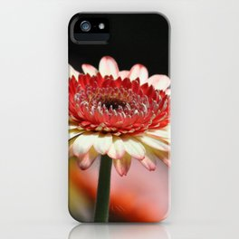 Flower in Malaysia iPhone Case