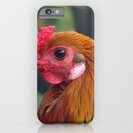 Cock iPhone Case