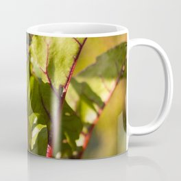 Beet Leaves Coffee Mug