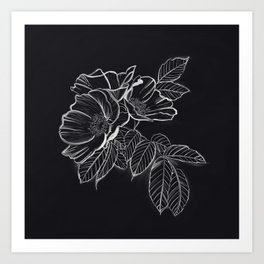Chalked Roses - Black and White Modern Florals Art Print