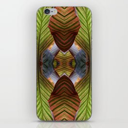 Striped Canna Lily Leaves iPhone Skin