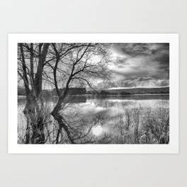 A view across the lake. Art Print
