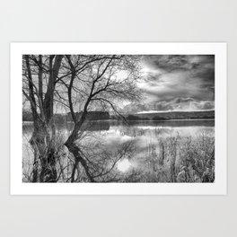 A view across the lake. Art Print