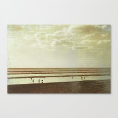 Beach #1 - Lonely beach with seagulls Canvas Print