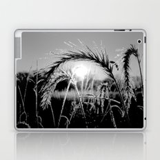 Wheat Sunrise B&W Laptop & iPad Skin