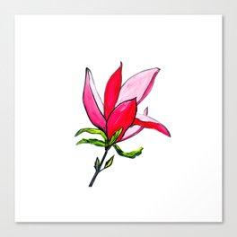 Magnolia the Anarchist Canvas Print