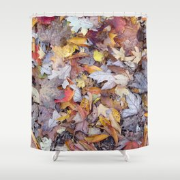 leaf litter menagerie Shower Curtain