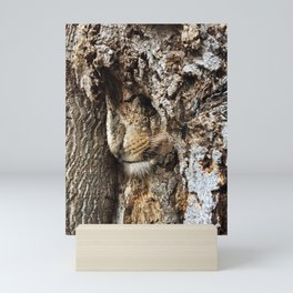 King of the Forest at Rest Mini Art Print