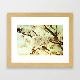 Sakura Gold Framed Art Print