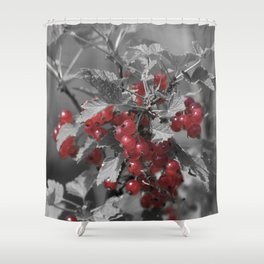Redcurrant Shower Curtain