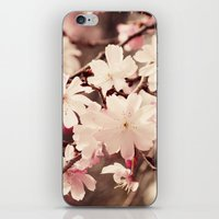 cherry blossom iPhone & iPod Skins featuring Cherry Blossom by Erin Johnson