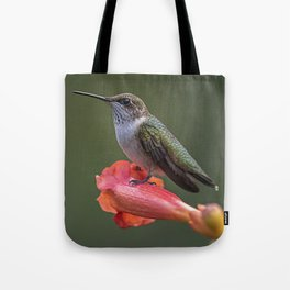 Humming bird resting on a flower Tote Bag