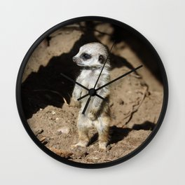 Meerkat_034_by_JAMFoto Wall Clock
