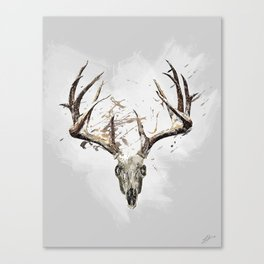 King of the Forrest - Trophy Buck - Deer Canvas Print