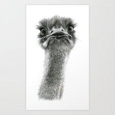 Cute Ostrich SK053 bis Art Print