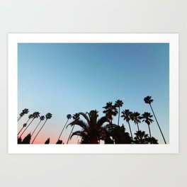 Summer Palms, Hollywood.  Art Print