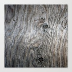 Real Aged Silver Wood Canvas Print